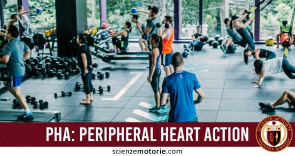 PHA, Peripheral Heart Action