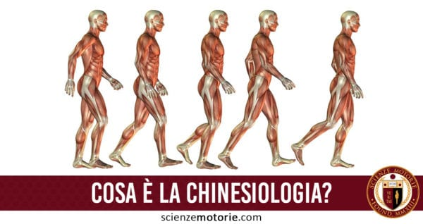 chinesiologia
